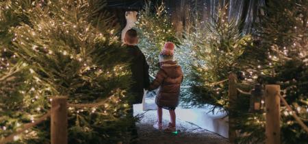 Christmas at Rand Farm Park
