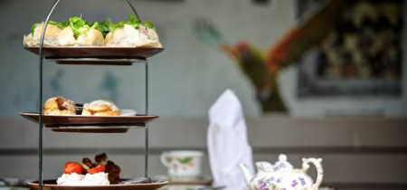 Afternoon Tea at Oddfellows Chester