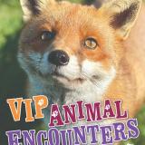 VIP Animals Encounters