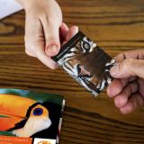 Ετήσιες κάρτες / Annual cards