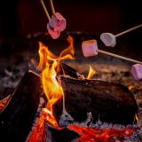 Campfires at Saunders Farm