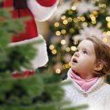Santa's Grotto - from Sunday 17th November - dates and times vary