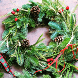 Notcutts Norwich - Christmas wreath making workshop with Romeo & Succulent - 11th December 2019