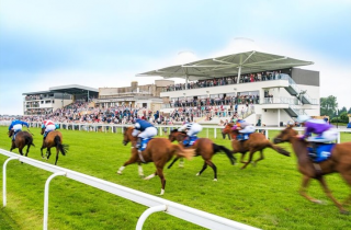 Days Out at Bath Racecourse