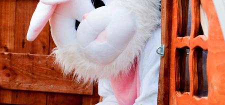 13 - 28 April 2019 inc Easter Eggstravaganza