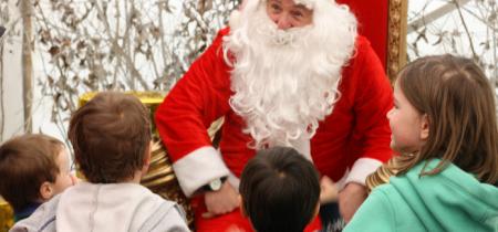 Santa at Apley Farm Shop