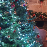Christmas Through the Ages- Guided House Tour