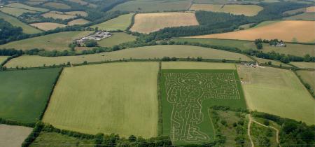 Maize Maze and Fun Farm Entry 2020