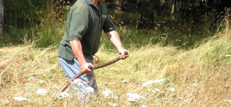 Countryside skills