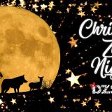 Christmas Zoo Nights