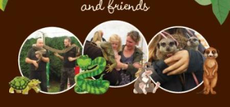 Meet The Meerkats & Friends 2017