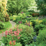 Annual Garden Memberships
