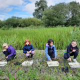 ODL Summer Holiday Linford Lakes Nature Activities