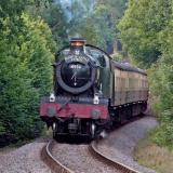 Dunster Castle Express 2019