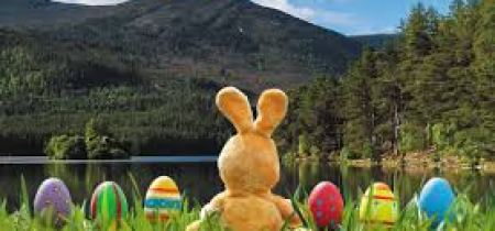 Easter Multi-Activity Schemes 8 - 12 year olds
