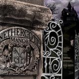 Nethercott Manor - Open Now