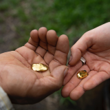 Sustainable Gold: A field trip to the Peruvian Amazon, Tues 22 June 2021, 3pm - 4pm GMT+1, Free, £3, £5, £10