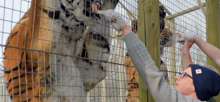 Animal Experience - Book Now! @ Wingham Wildlife Park