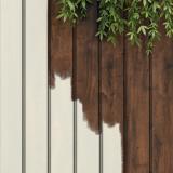 Garden Paints
