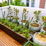 Gardening in Small Spaces Oxford Privilege Talk 21st June 2019