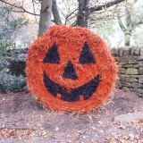 Halloween - 26th October to 3rd November 2019