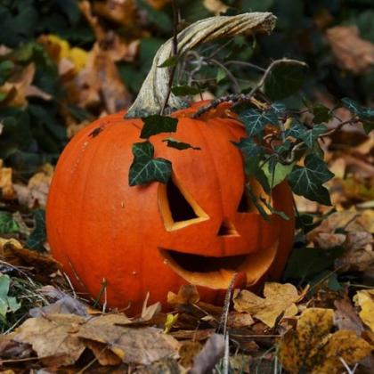 'Halloween' Outdoor Cinema
