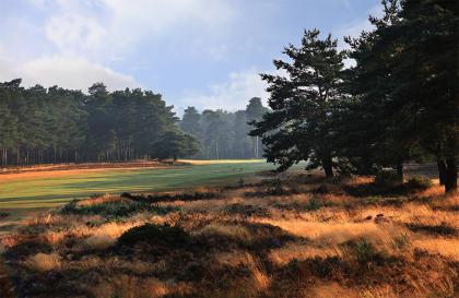Annual Golf Day