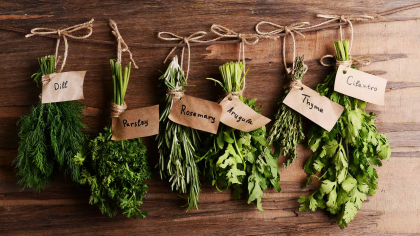 Benefits of Herbs Workshop