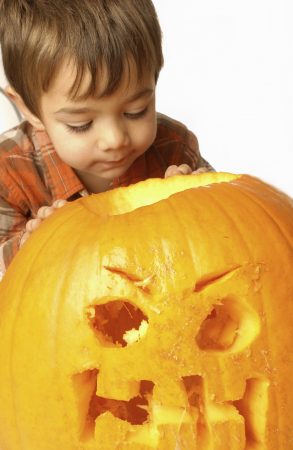 Pumpkin Carving 2016 On-line Prices