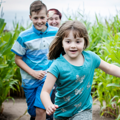 Pirates of the Maize Maze 15 July - 4 September 2017