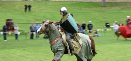 Medieval Mayhem!