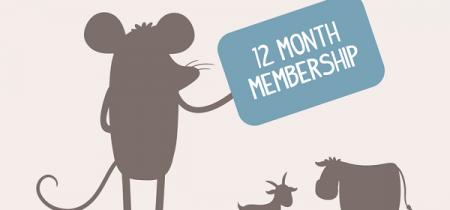 12 Month Membership Passes