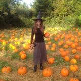 Pumpkin Festival at Scalp Wood
