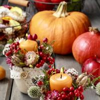 Pumpkin Floristry Workshop