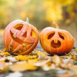Pumpkin Spooktacular 2021 (23rd Oct-31st Oct)