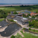 Pre-existing ticket holders - Slimbridge (Boxing Day - January)