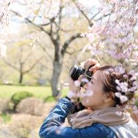 Spring Parkland Photography