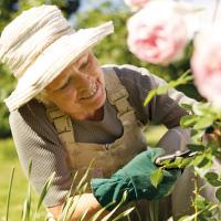 Spring Pruning Workshop