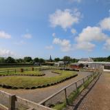 Farm Park Admission