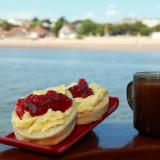 River Exe Cream Tea Cruise