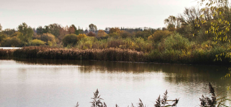 Linford Lakes Nature Reserve New and Renewal Permits