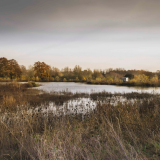 ODL Talk: Woodlands and Wetlands cared for by The Parks Trust