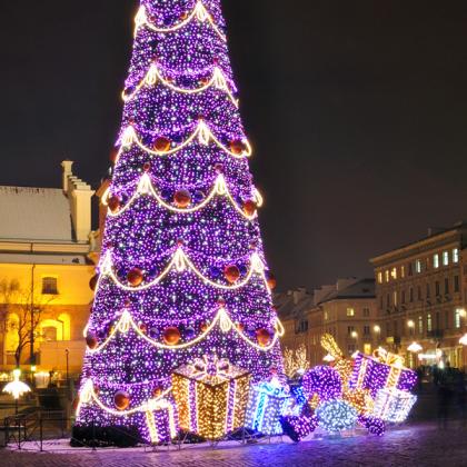 Winter Wonderland Christmas Light Show