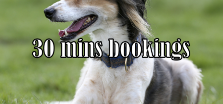 Apley Dog Park - 30 mins bookings