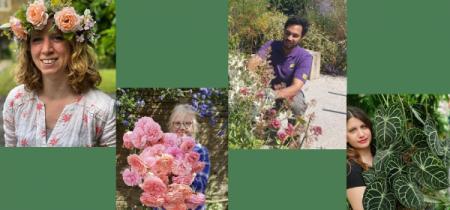 Ask the Gardeners