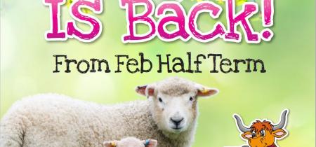 Lambing Is Back (Feb Half Term)
