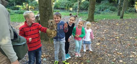 Children's Owl Experience
