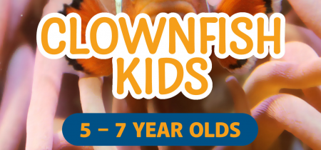 Clownfish Kids Party: 5-7 Year Olds