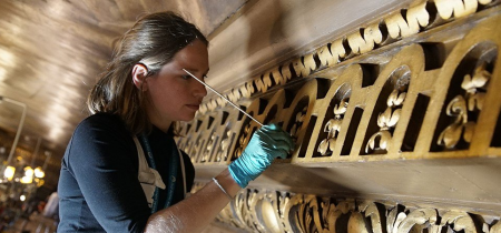 Conservator-led Tours - August 2018
