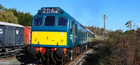 Goods Train Diesel Driver Experience